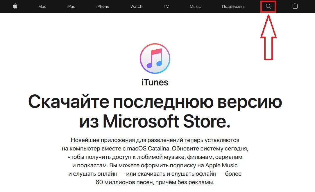 поисковая панель iTunes